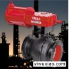 美国埃梯THD系列大扭矩重载气动执行器